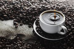 Coffee splash in cup Royalty Free Stock Photography