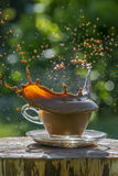Coffee splash Royalty Free Stock Images