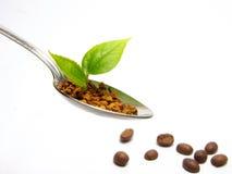 Coffee spoon stock photo