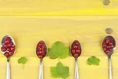 Coffee spoon with red currants on a yellow wooden table. Preparing for home baking currant dessert Stock Photos