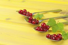 Coffee spoon with red currants on a yellow wooden table. Preparing for home baking currant dessert Stock Photo