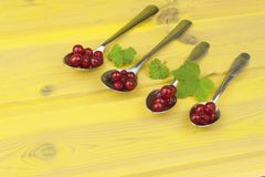 Coffee spoon with red currants on a yellow wooden table. Preparing for home baking currant dessert Royalty Free Stock Photos