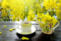 Coffee and spring yellow flower on nature autumn background Royalty Free Stock Photos