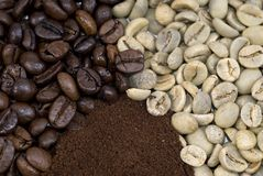 Coffee stages. Three stages of the coffee bean; green; Roasted; Ground royalty free stock images