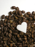Coffee and sugar. Roasted coffee and suger Stock Photos