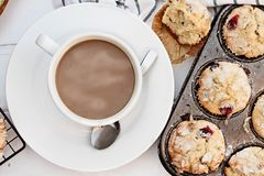 Coffee and Sweet Cranberry Muffins. Hot coffee and fresh homemade cranberry muffins. Image shot from above royalty free stock photos