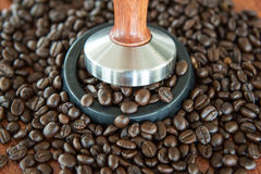 The coffee tamper and roasted coffee in rubber base Royalty Free Stock Images