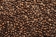 Coffee texture. Coffee beans texture, food pattern royalty free stock images