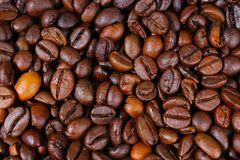 Coffee texture. Roasted coffee beans as background wallpaper. Beautiful arabica real cofee bean illustration for any. Concept. Gourmet coffee beans macro Royalty Free Stock Photo