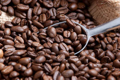 Coffee theme Stock Image