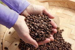 Coffee theme. High resolution image with coffee beans Royalty Free Stock Photo