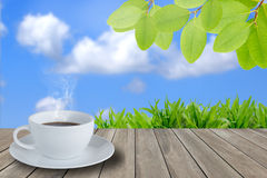 Coffee time  in green environment concept Royalty Free Stock Photo