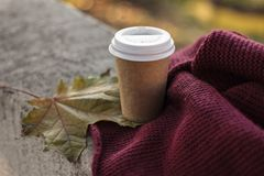 Coffee to go cup and scarf in autumn royalty free stock images