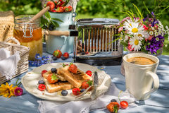 Coffee, toast and fruit for breakfast in the garden Royalty Free Stock Photography