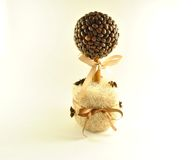 Coffee tree. Topiary, a hand made thing Stock Photography
