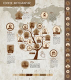 Coffee tree infographic for your design Stock Photography