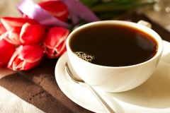 Coffee and tulips Stock Images