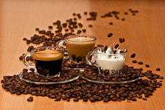 Coffee Variety Royalty Free Stock Photo