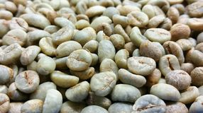 Green coffee beans are unroasted. Coffee wallpaper from Chiang Mai, Thailand Royalty Free Stock Images
