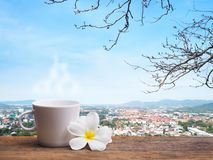 Coffee and white plumeria flowers Stock Images