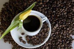 Coffee and a yellow tulip Royalty Free Stock Photography