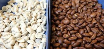 Coffeebean Fotografia Stock