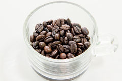 Coffeebean Royalty Free Stock Images