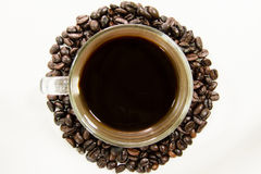 Coffeebean white cup Royalty Free Stock Images