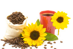 Coffeebeans cup sunflower Stock Photography