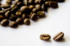 Coffeebeans1 Fotografia de Stock Royalty Free