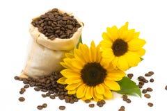 Coffeebeanszonnebloemen 2 Stock Foto's