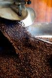 Coffeproductie, hete bonen die in de vultrechter vallen Royalty-vrije Stock Afbeeldingen