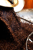 Coffeproductie, hete bonen die in de vultrechter vallen Stock Foto's