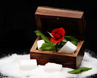 The coffer of the sweets. A roses in coffer of sugar stock photo
