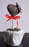 Coffes träd Fotografering för Bildbyråer