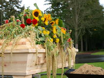 Coffin with flowers. On top Royalty Free Stock Photo