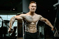 Coffre caucasien brutal de formation de bodybuilder dans le gymnase Images stock