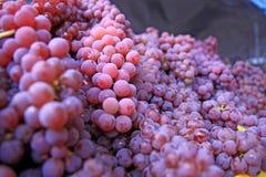Coffre des raisins rouges et verts Image stock