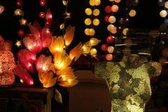 Coffre et fleurs légers Photo libre de droits