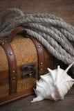 Coffre et seashell image libre de droits