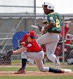 Coffre-fort aîné d'Aruba de série du monde de base-ball de ligue Photos libres de droits
