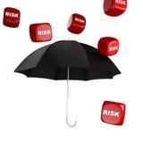 Coffre-fort de risque Images stock