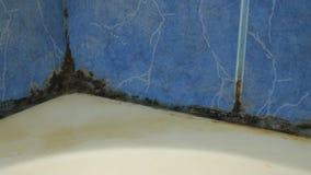 coffret moisi de douche d'extrémité de salle de bains banque de vidéos