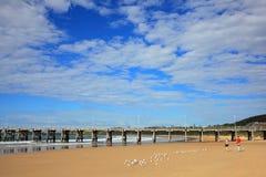 Coffs Harbour跳船和海滩风景 库存图片
