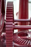 Cog-wheel Stock Image