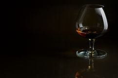 Cognac. In the big glass on a dark background Royalty Free Stock Images