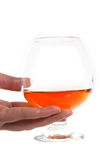 Cognac. Hand holding glass with cognac Stock Photos