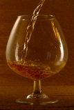 cognac Fotografia Stock