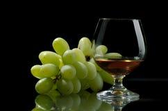 Cognac. Glass excellent brandy on a dark background Stock Image
