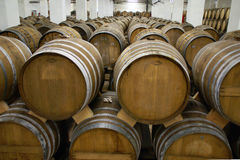 Cognac barrels Royalty Free Stock Photography